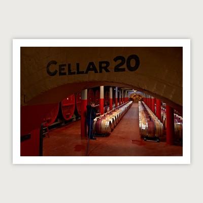 Cellar 20 Magill
